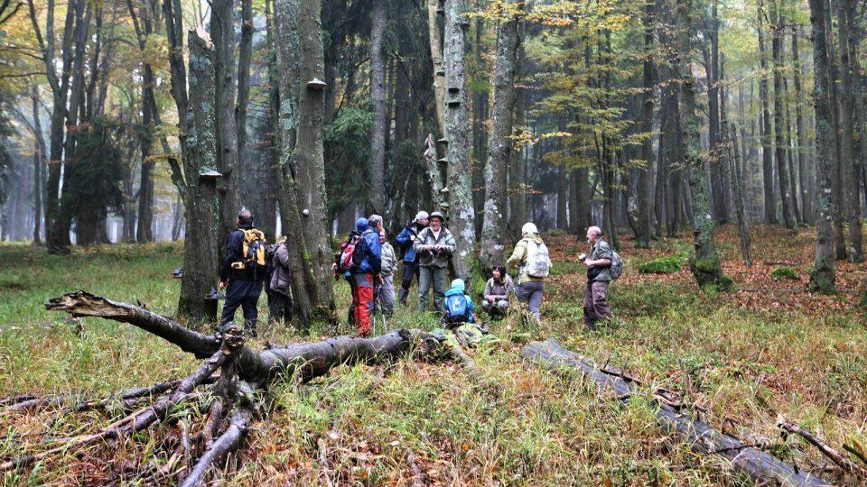 Průvodci šumavskou divočinou ukazují návštěvníkům to nejzajímavější z národního parku