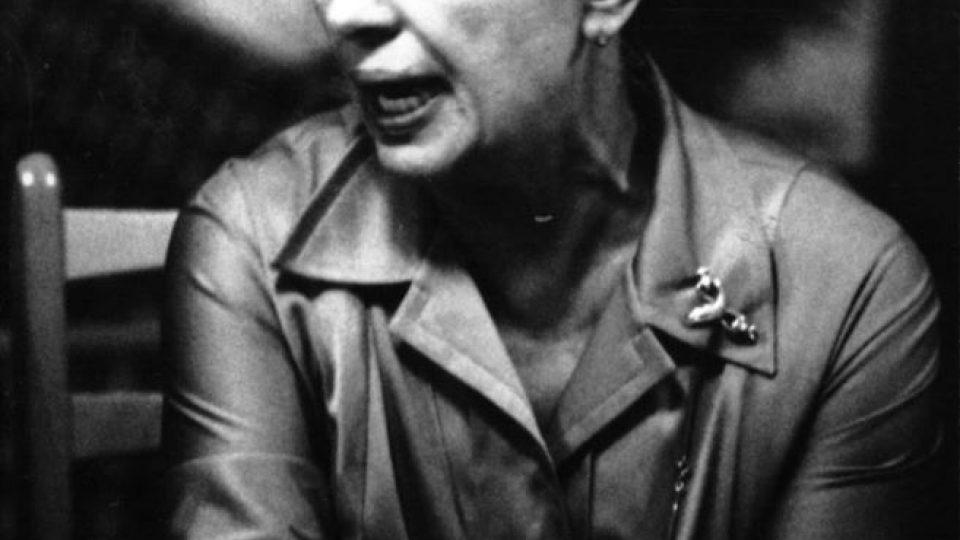 D.M.- přehlídka-1979