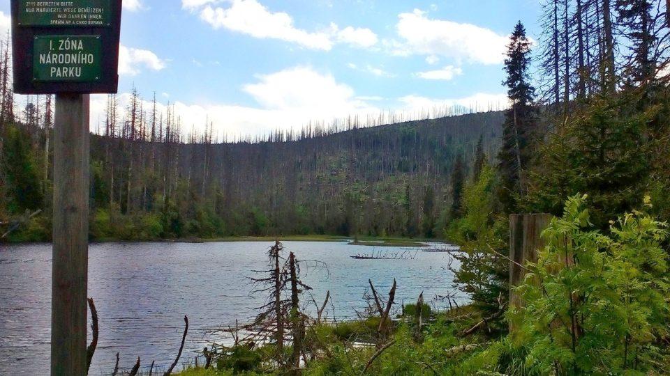 Jezero je právem součástí Národního parku Šumava