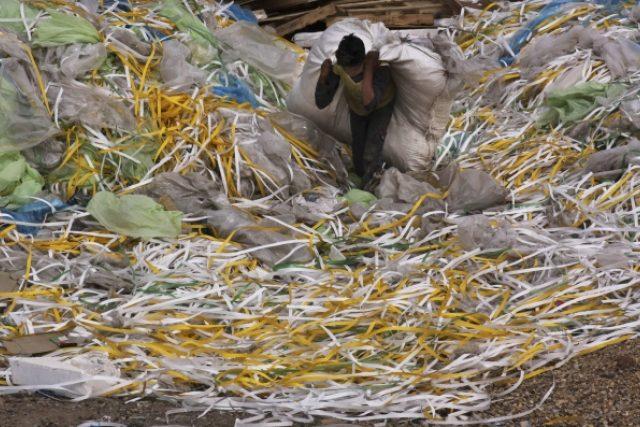 Den Země, úklid odpadků